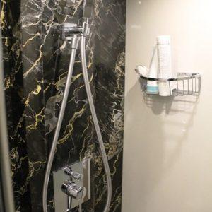 Guestcabbathroom shower 780h4